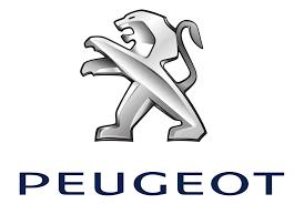 Kryty svetlometov Peugeot