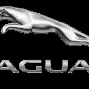 Kryty svetlometov Jaguar